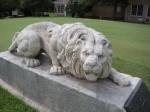 lions-municipal